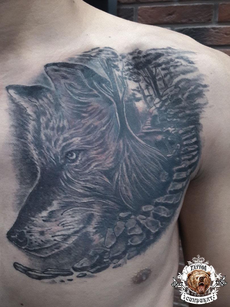 Сделать тату на груди волк в Красноярске